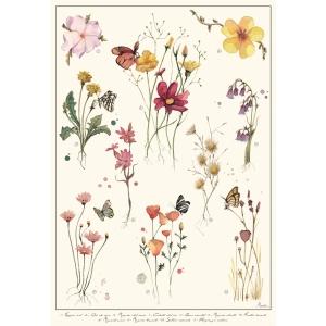 Flores silvestres - Lámina A3 Marialu