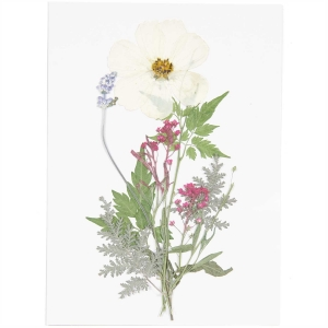 mix set white violet (7pcs) - (flores prensadas)