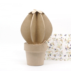 Cactus Bola cartón craft